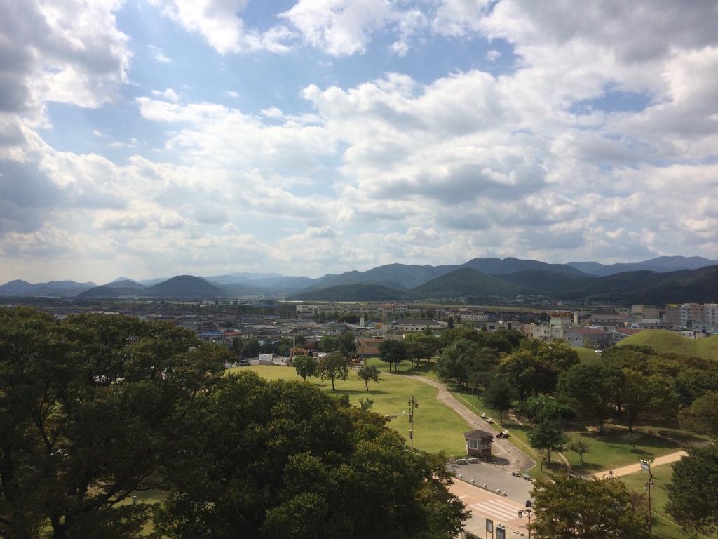 Top of a Gyeongju tomb